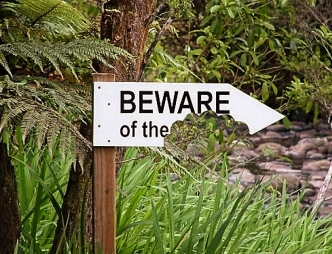 Beware of the Sign copy